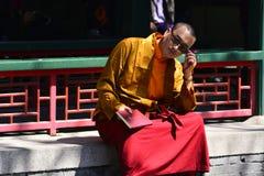 Lama del Tibet Fotografia Stock Libera da Diritti