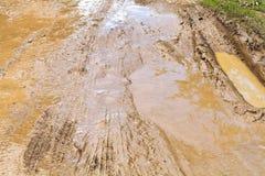 Lama e poça na estrada de terra Imagem de Stock