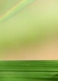 Lama ed arcobaleno dell'erba Fotografia Stock