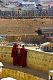 Lama en Shangri-La Fotos de archivo libres de regalías