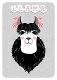 Lama, funny portrait with white skin and black wavy coat stock illustration