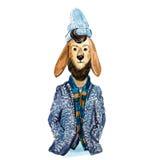 Lama lindo del inconformista con la barba en bufanda, chaqueta y sombrero Foto de archivo