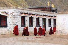 Lama in the monastery. Gansu. China Stock Photo