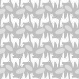 092 lama pattern 01 Stock Images