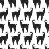 092 lama pattern 01 Stock Image