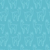 092 lama pattern 01 Royalty Free Stock Photos
