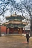 Lama Pekin świątynna porcelana Obrazy Royalty Free