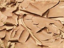 Lama secada Fotografia de Stock