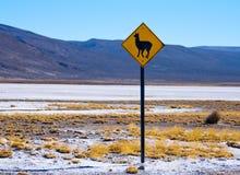 Lama, segno dell'alpaga, Perù Fotografia Stock Libera da Diritti