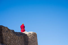 Lama standing on the wall Royalty Free Stock Photo