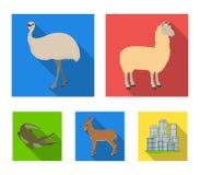 Lama, struisvogelemoe, jonge antilope, dierlijke krokodil Wild dier, vogel, reptiel vastgestelde inzamelingspictogrammen in vlakk Stock Foto's