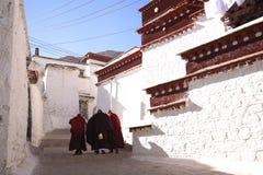 Lama and sunny Monastery Royalty Free Stock Photo