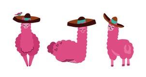 Lama svegli e alpaca messi in sombrero Animali sorridenti divertenti isolati su fondo bianco Carattere disegnato a mano del lama illustrazione vettoriale