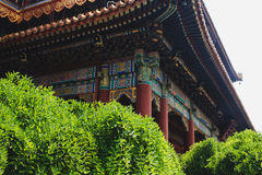 Free Lama Temple, Beijing, China Royalty Free Stock Images - 73902789