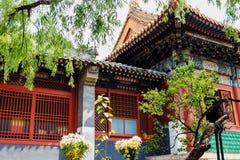 Lama temple, Beijing, China Royalty Free Stock Photography