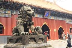The lama temple Stock Image