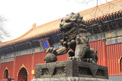 The lama temple Royalty Free Stock Photo