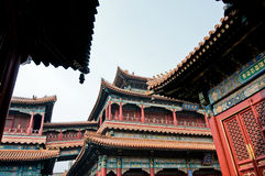 Lama Temple Royalty Free Stock Photo