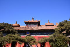 Lama TempleA monk Royalty Free Stock Photo