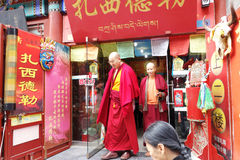 Lama tibetana del monaco Fotografia Stock Libera da Diritti