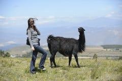 Lama und eine Frau Lizenzfreie Stockbilder