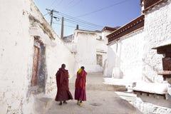 Lama und sonniges Kloster Stockbild