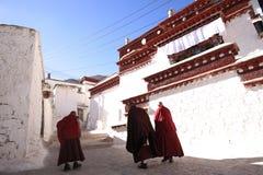 Lama und sonniges Kloster Lizenzfreies Stockbild