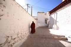 Lama und sonniges Kloster Lizenzfreies Stockfoto