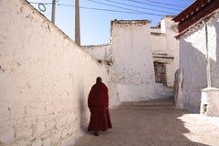 Lama und sonniges Kloster Lizenzfreie Stockfotografie