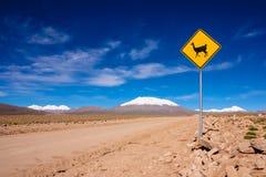 Lama-Verkehrsschild Stockbilder