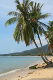 Lamai beach Royalty Free Stock Photo