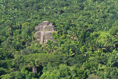 Lamanai, maya ruins Royalty Free Stock Photos