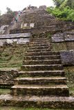 Lamanai Maya Temple Stock Photo