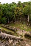 Lamanai Maya Temple Royalty Free Stock Photography