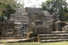 The Lamanai ruins in Belize royalty free stock image