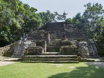 Lamanai-Tempel in Belize Stockbild