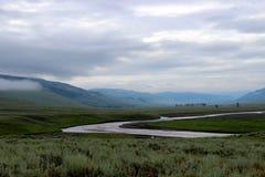 Lamar River i den Yellowstone nationalparken royaltyfria bilder