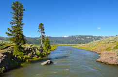 Lamar River Yellowstone Stock Foto's