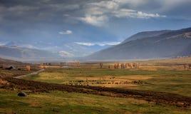 Lamar Valley orageux dans Yellowstone images libres de droits