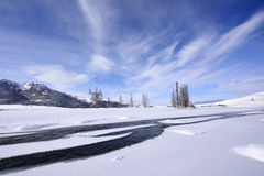 Lamar Valley in Winter Royalty Free Stock Photos