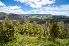 Lamar Valley in Yellowstone Stock Photography