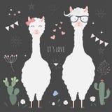 Lamas bonitos para o convite do casamento Imagens de Stock Royalty Free