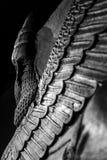 Lamassus Стоковая Фотография RF