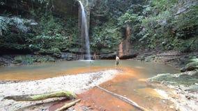 Соедините заплывание в пестротканый естественный бассейн с сценарным водопадом в тропическом лесе холмов национального парка Lamb акции видеоматериалы