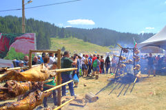 Lamb barbecue at Rozhen Fair,Bulgaria Royalty Free Stock Photos