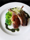 Lamb chop meal. A photograph showing a delicious gourmet cuisine dish of grilled lamb chops with herbs, served with organic vegetables such as broccoli, alfalfa Stock Images