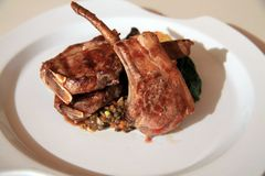Lamb chop steak Royalty Free Stock Images
