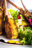 Lamb chops. With mashed potatoes and a little salad Stock Photos