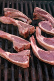 Lamb Chops on the Bbq Royalty Free Stock Image