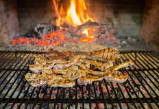 Lamb chops on grill Royalty Free Stock Photo